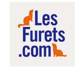 lesfurets.com 320x260